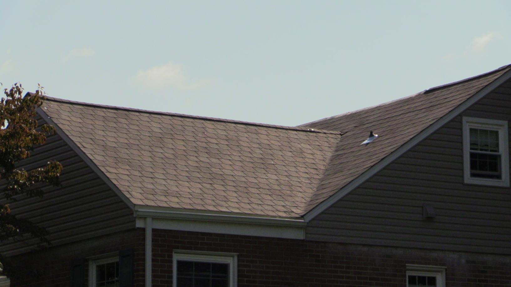 Another Closer View Of This Wonderfully Executed Shingle Installation
