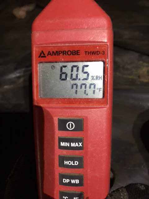 High Humidity in a Crawl Space in Felton, DE