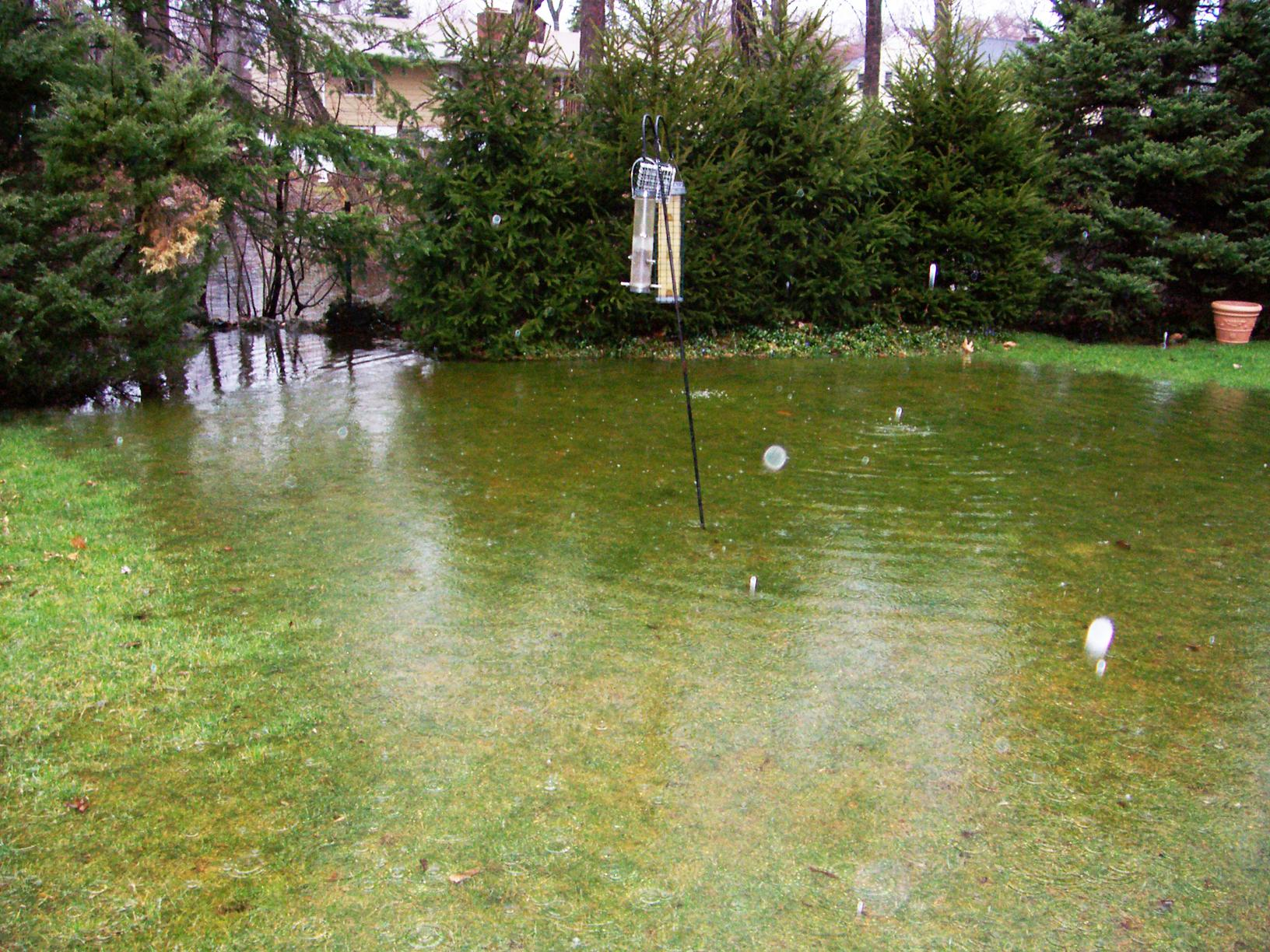 Flooded Yard in Cos Cob, CT