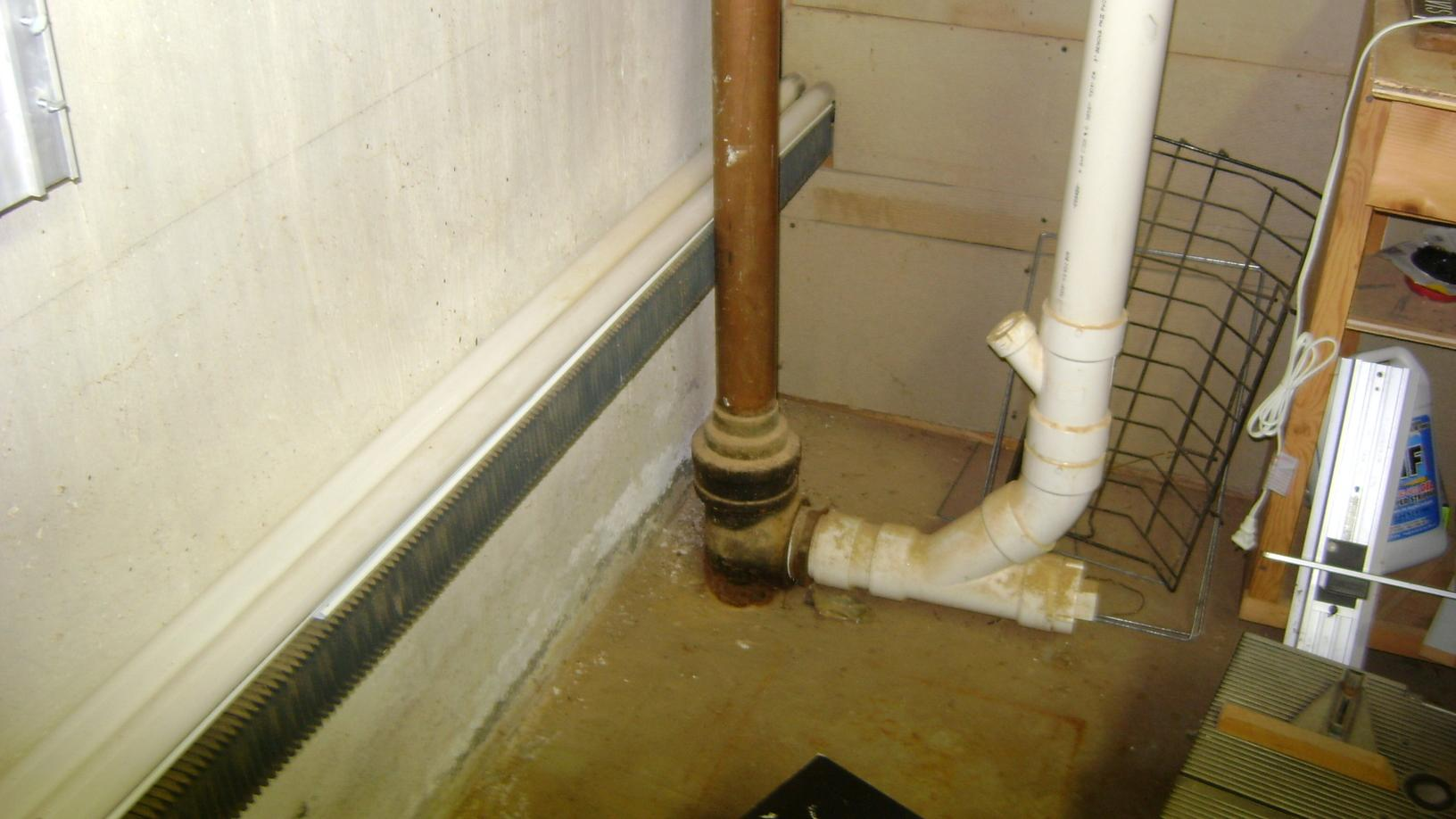 Moldy Basement in Danielson, CT