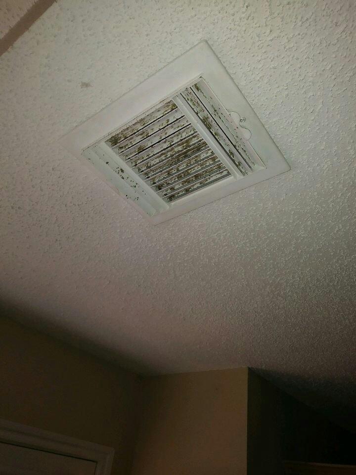 Mold In HVAC