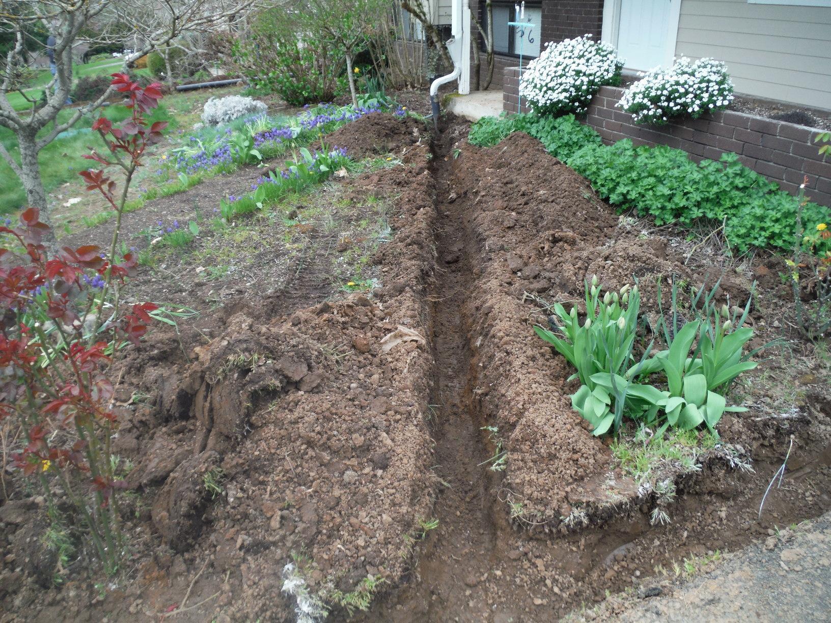 Yard drain line pre-installation