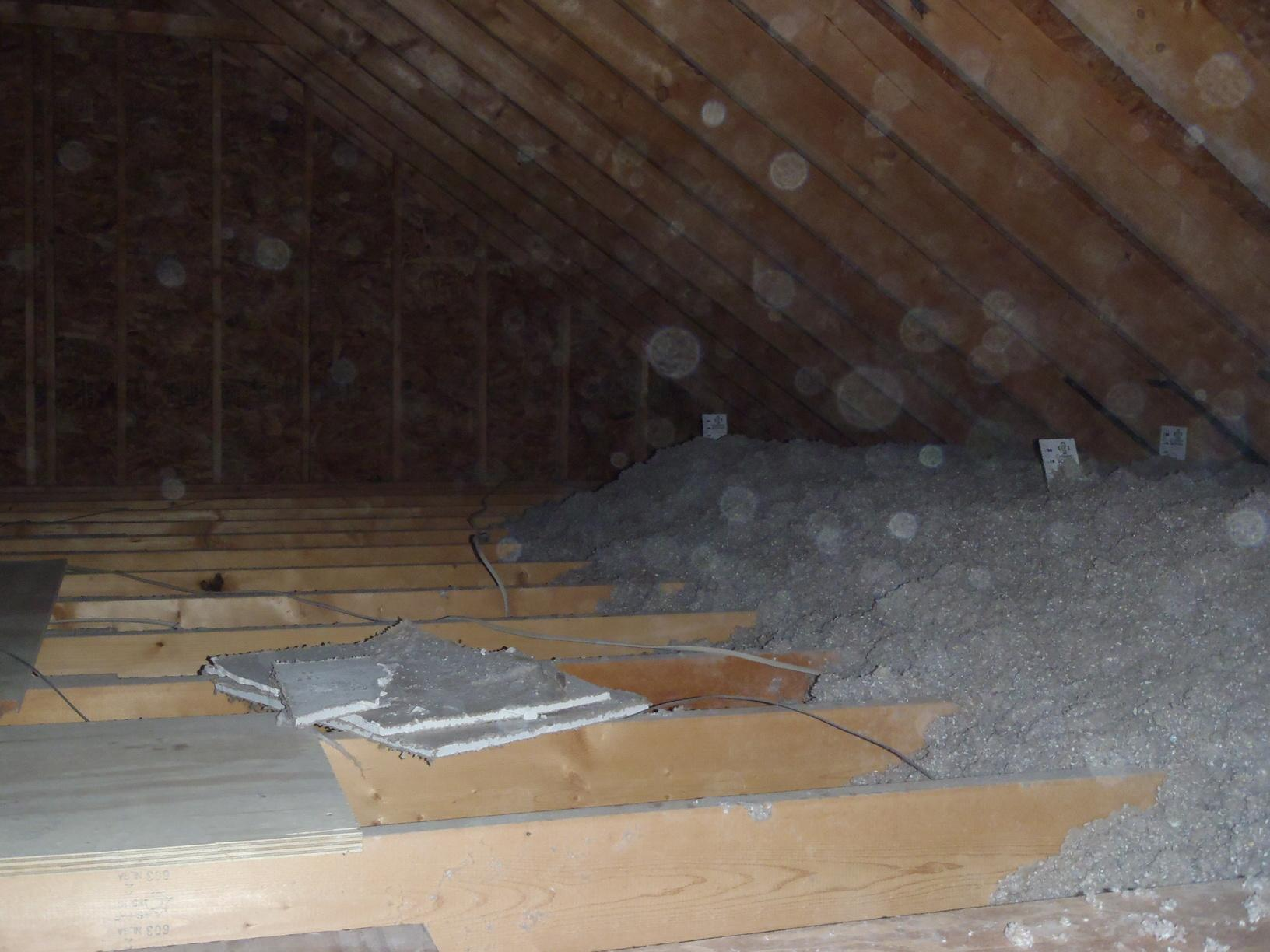 A look at how much insulation this Camden Wyoming, DE attic should have