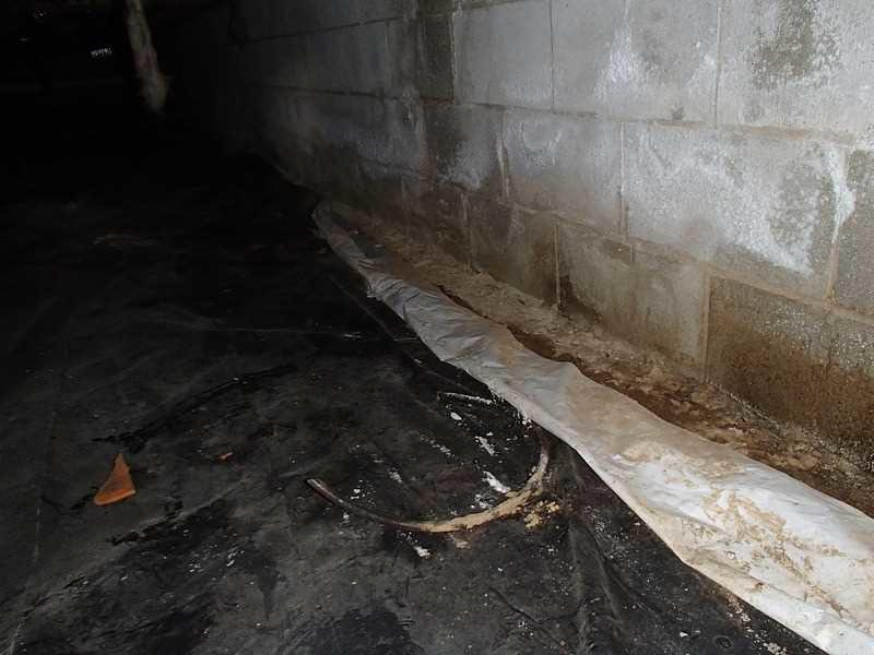 Evidence of Water in a Crawl Space in  Rehoboth Beach, DE