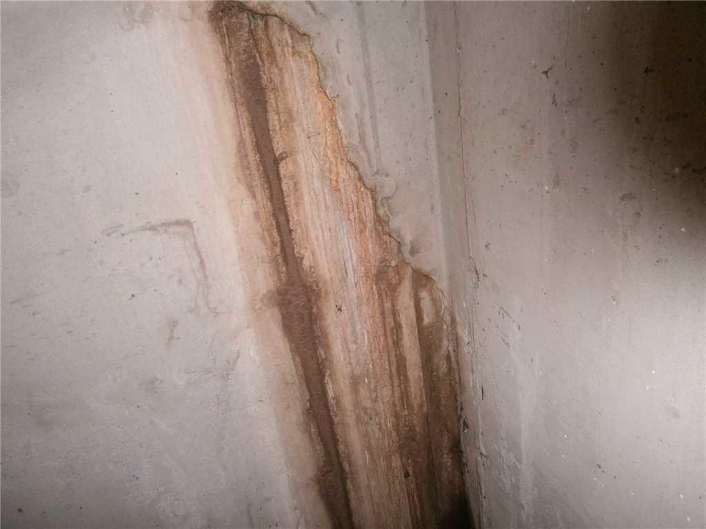 Evidence of Water Damage