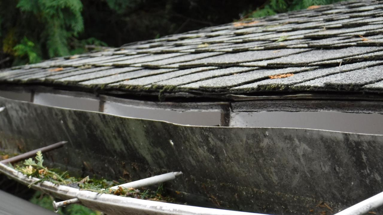 Damaged Roofing in Lynden, Washington