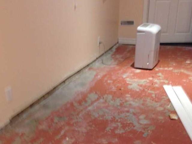 Ruining flooring and drywall