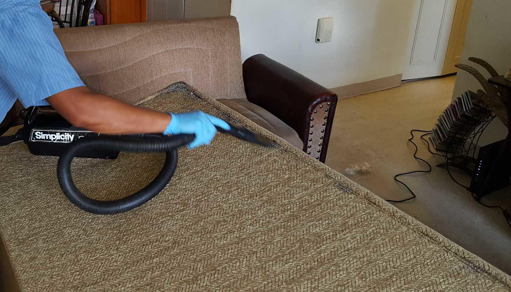 Vacuuming up the bed bugs.