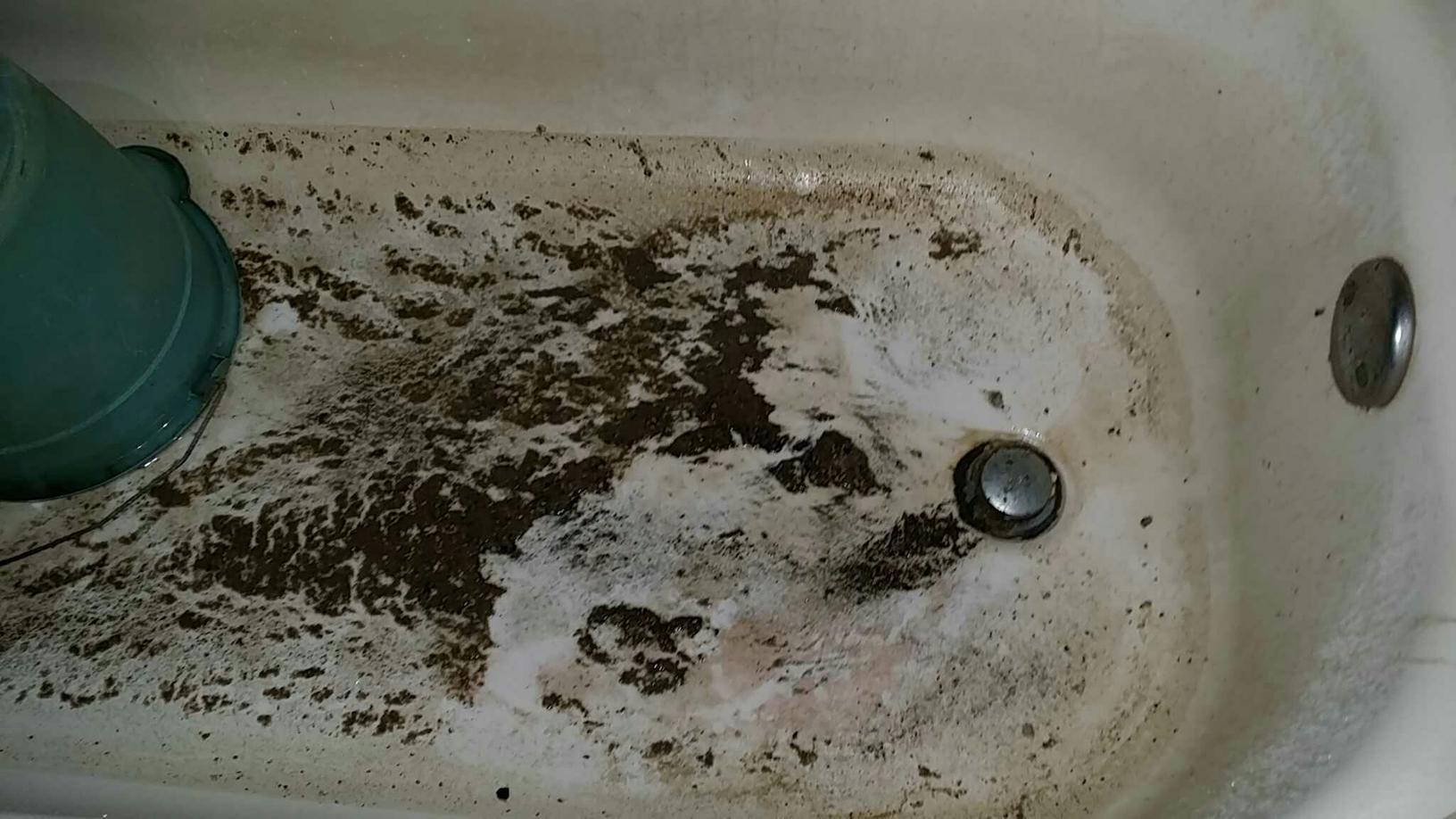 Bathroom Sewage Job
