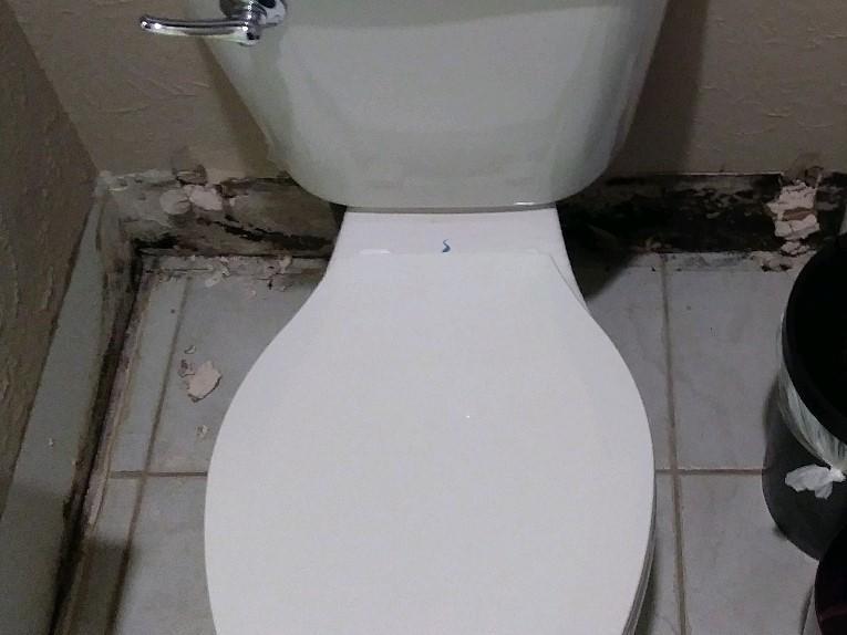 Mold Behind Toilet Grand Prairie, TX