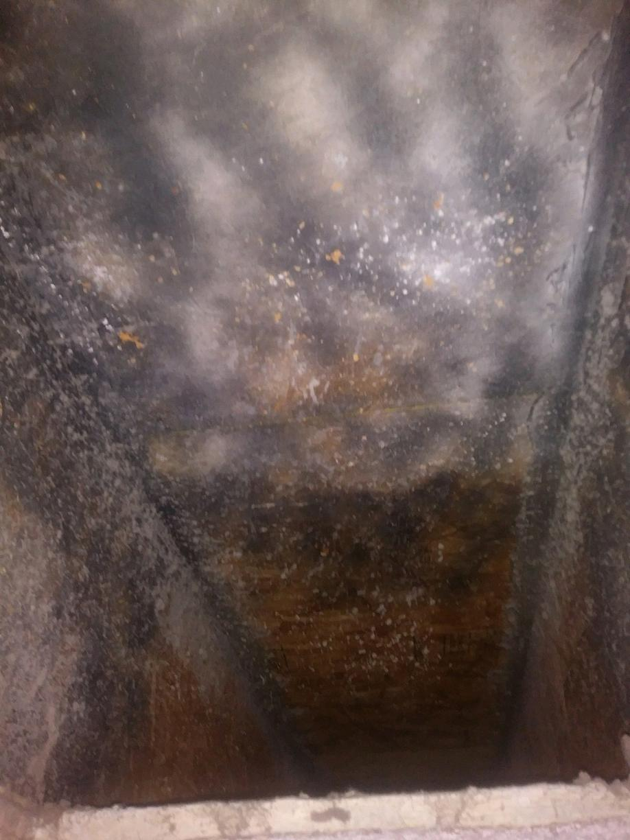 Mold Growth in AC Ducts Crowley TX