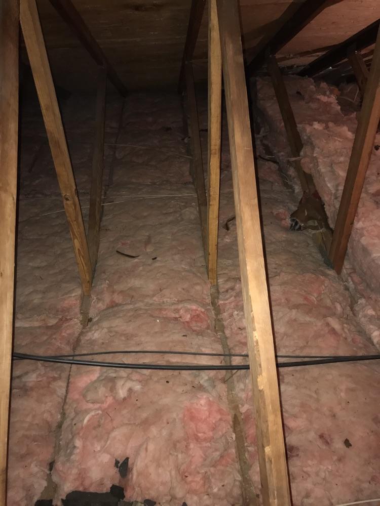 Old Fiberglass Insulation