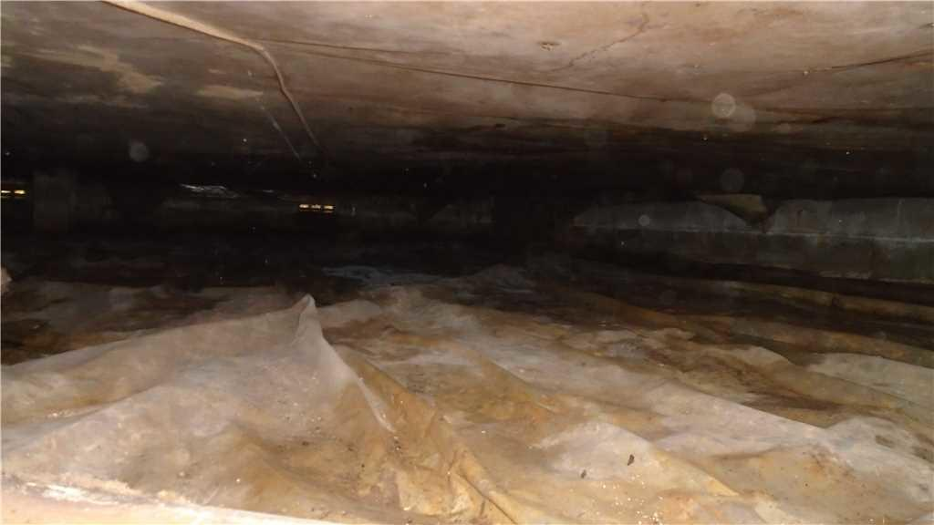 A Crawlspace DISASTER