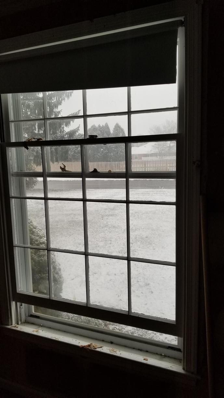 Replacing Single Pane Wood Windows in Maple Glen, PA