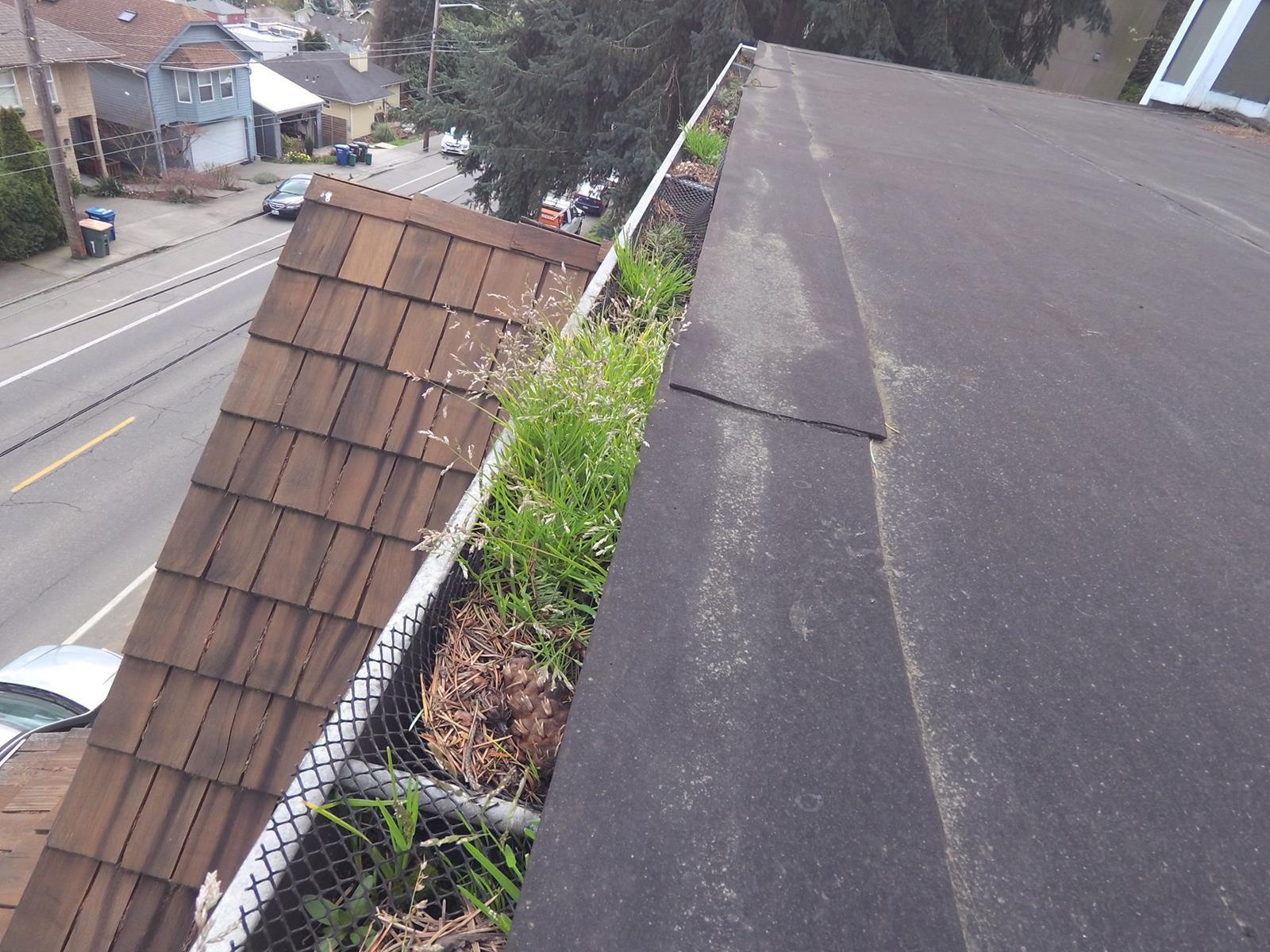 Flat area of roof with DIY gutter guards