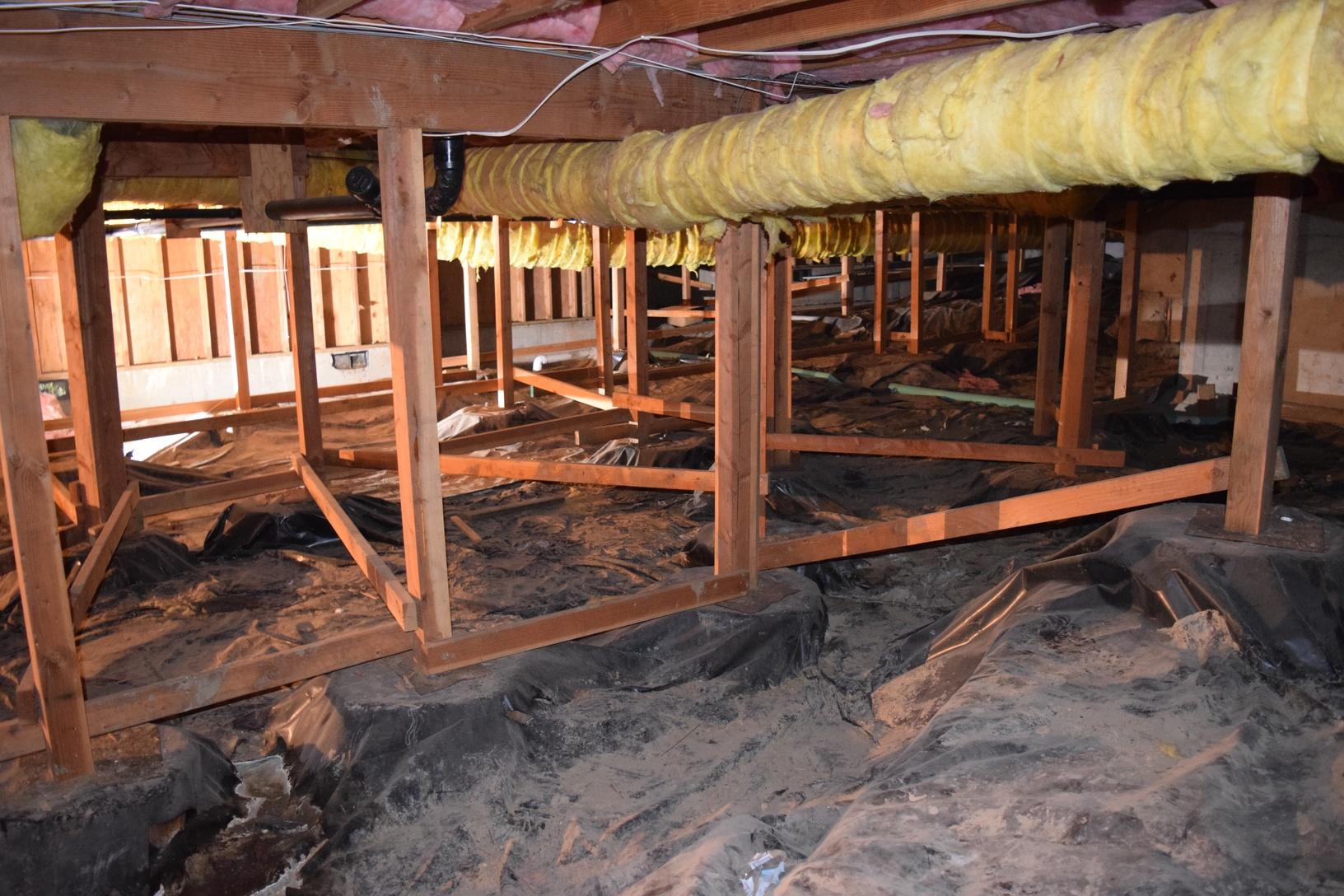 Before the crawl space was encapsulated by TerraFirma