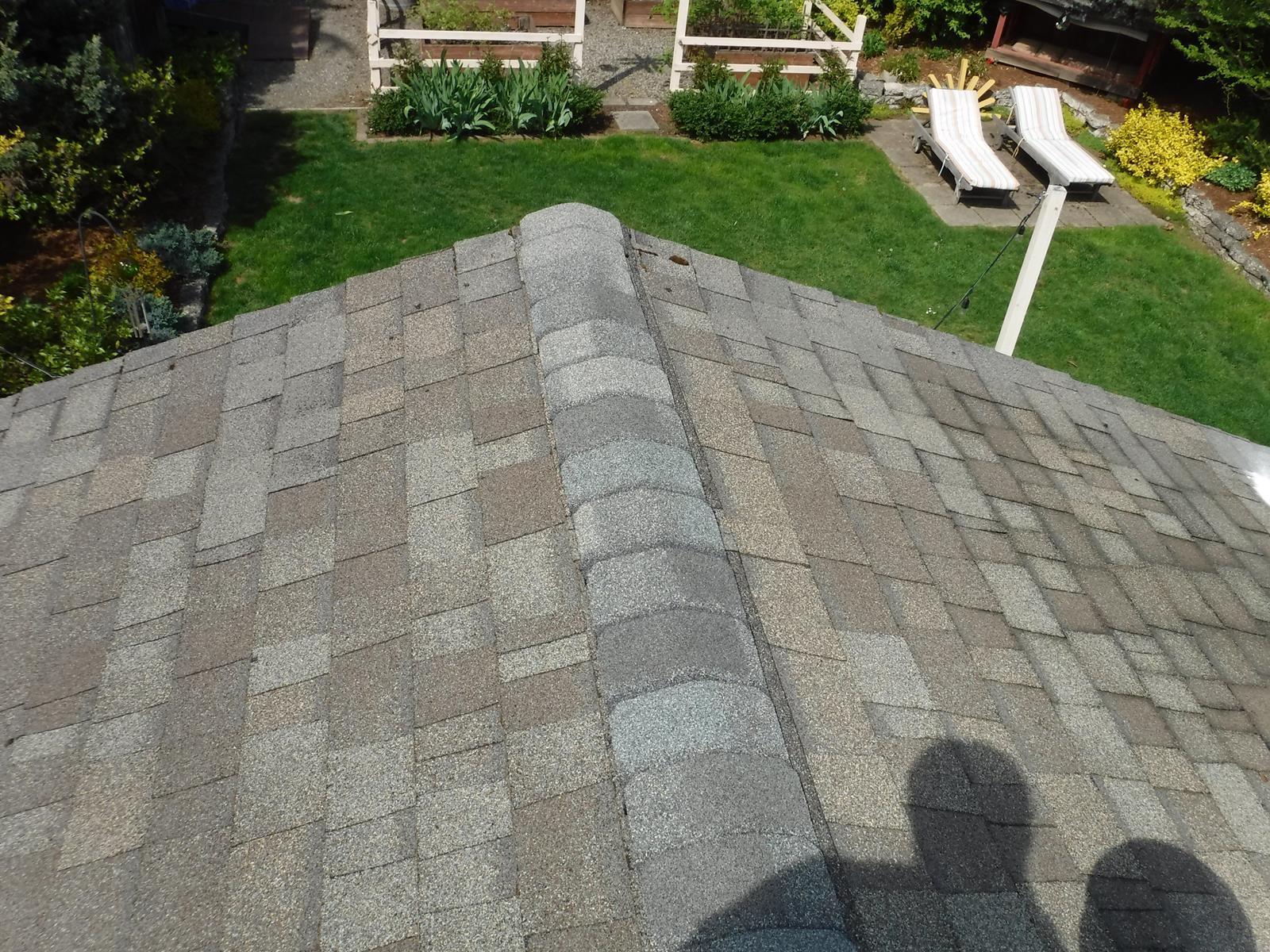 Kirkland, Washington Roof Cleaning.