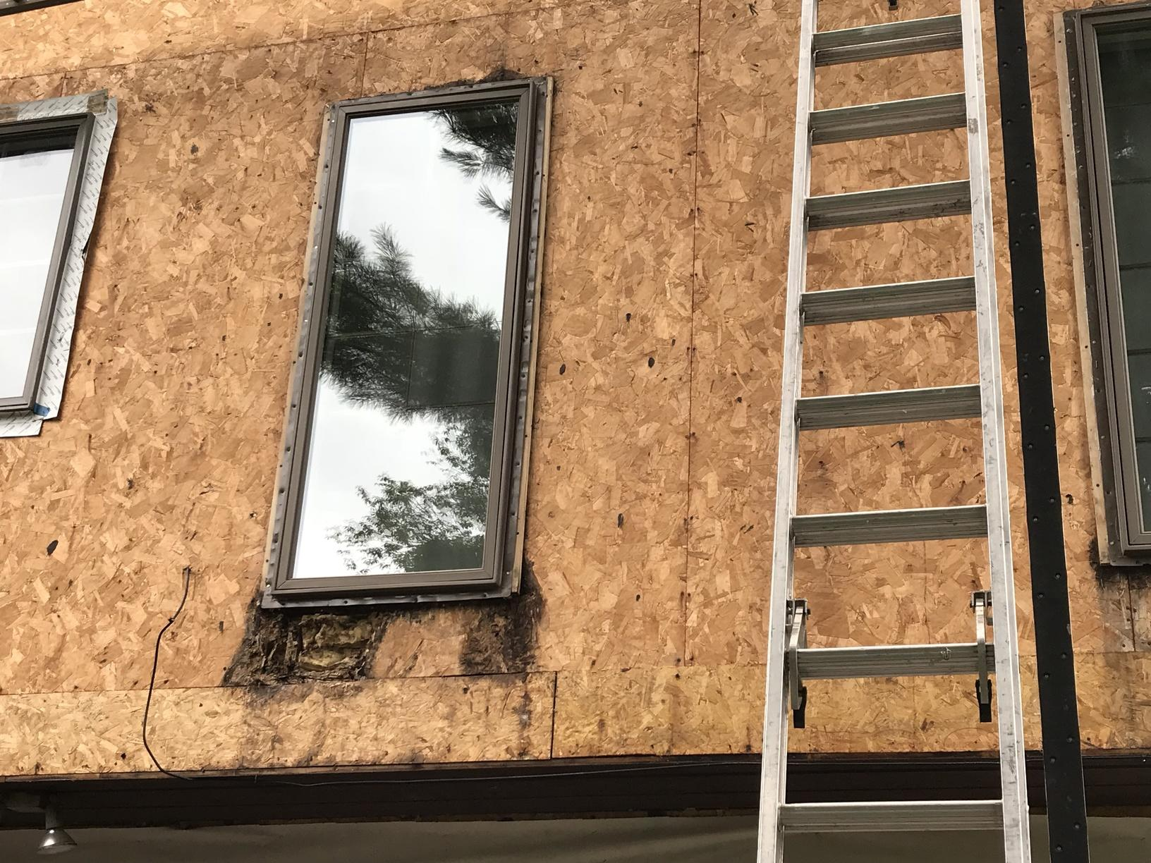 Rotting Wood Around Windows