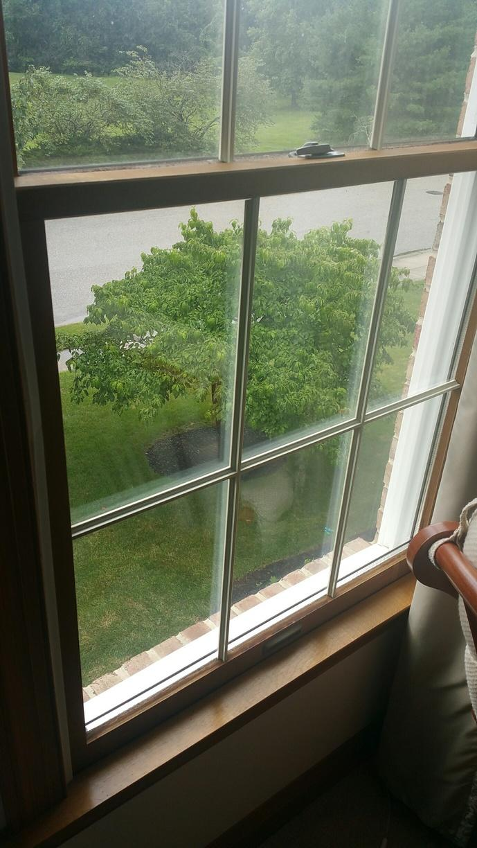 Replacing Rotted-Out Wood Double Hung Windows in NJ