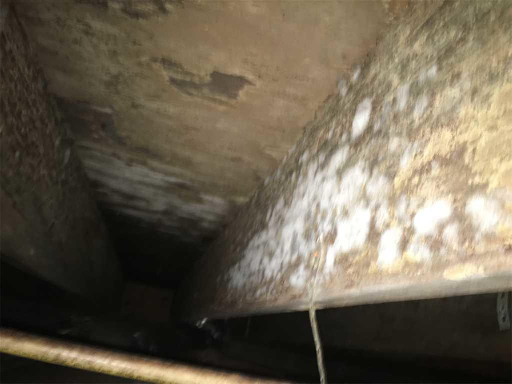 Before: A Musty, Moldy, and Damp Crawlspace