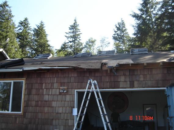 Tree Damaged Roof in Astoria, OR