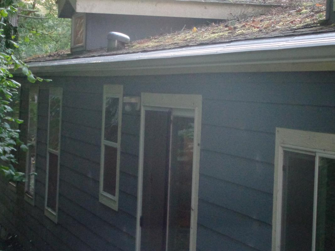 Cleaned Gutters and Roof in Tigard