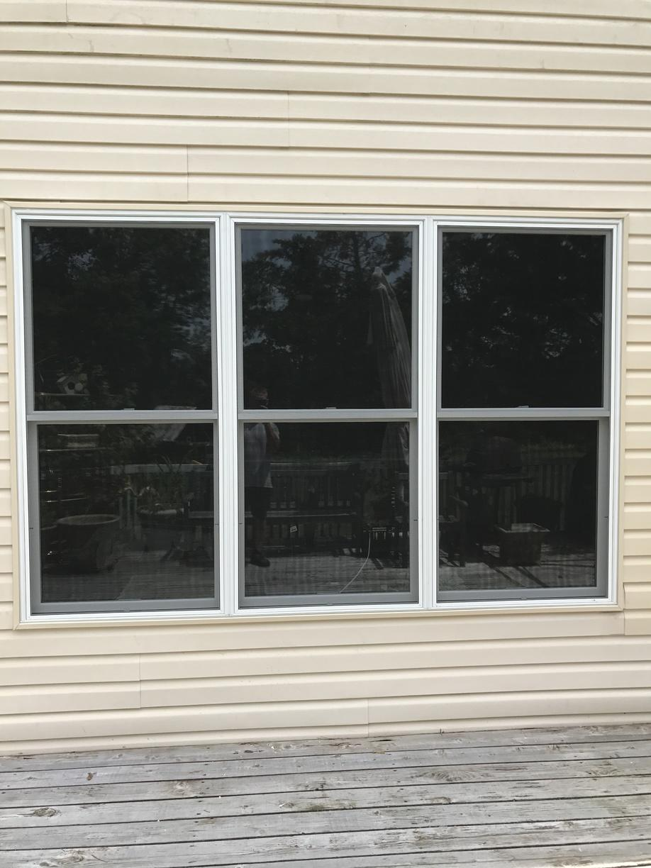 Infinity Double Hung Windows with No Grilles