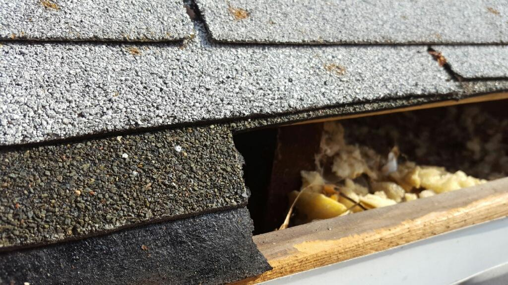 Close up of Shingles and Roof