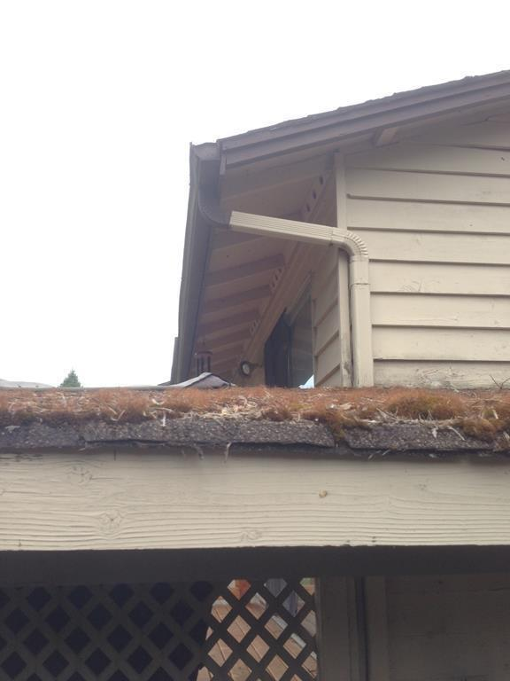 Roof in need of cleaning and gutters needed
