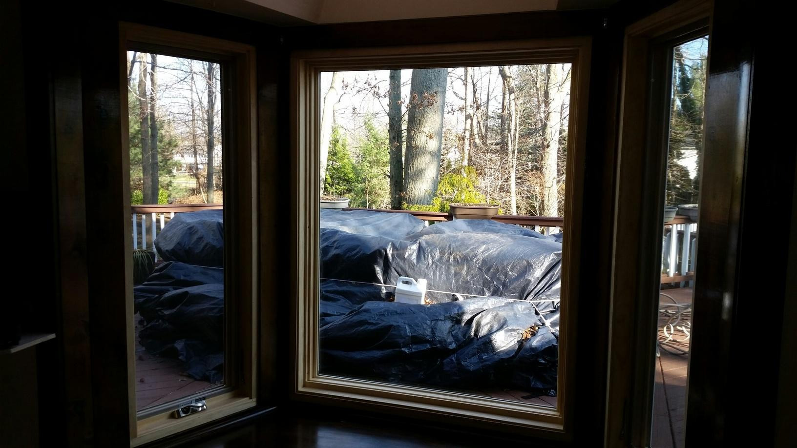 Interior View of new Windows