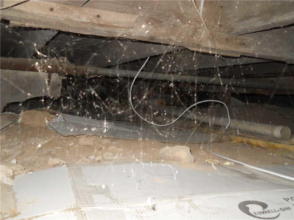 Scary Crawl Space!