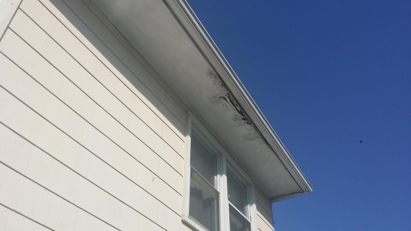 Before Photo of Soffit