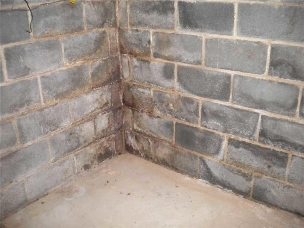 Basement Walls Before Waterproofing
