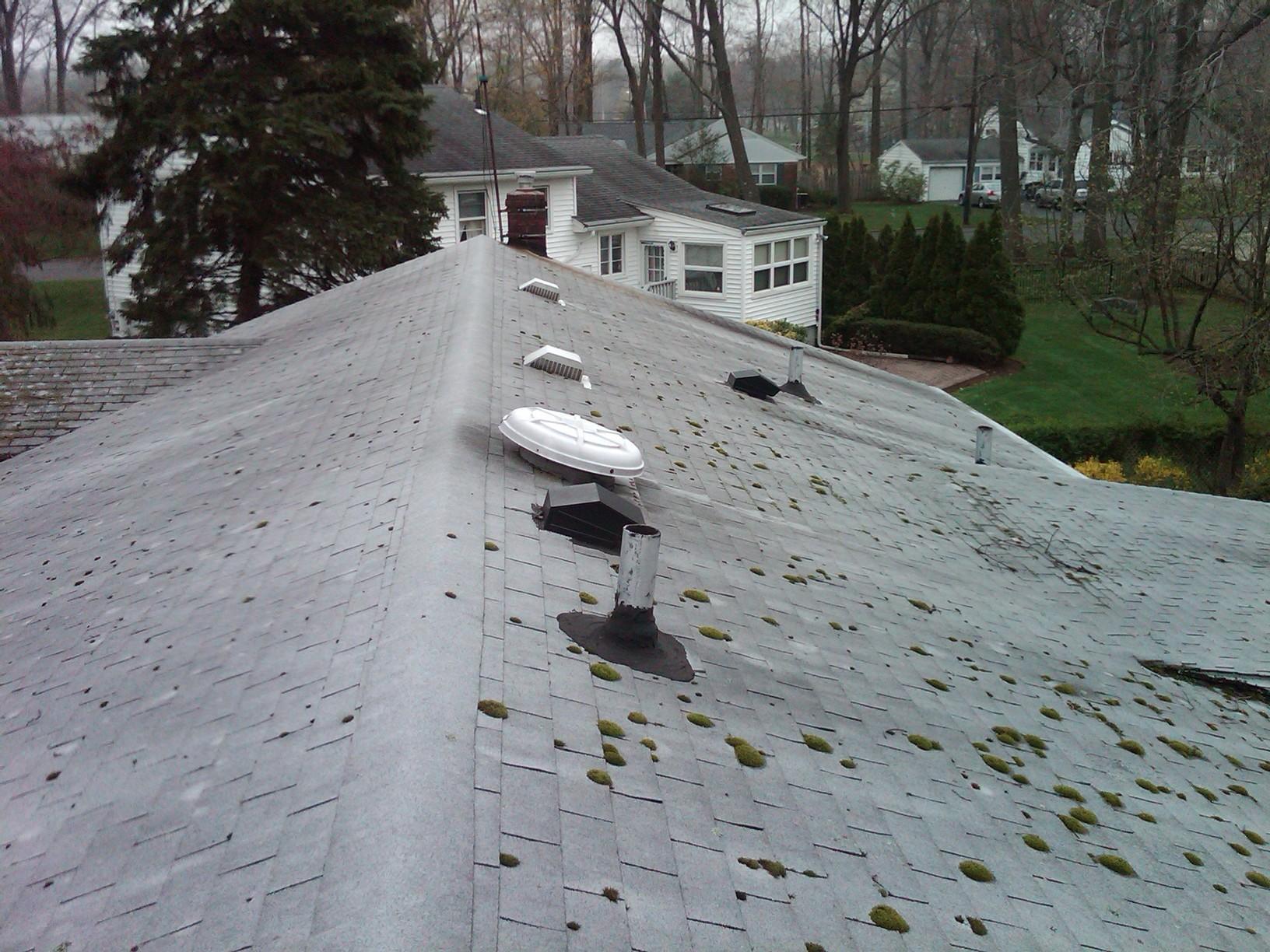 Replacing Moss-Covered Asphalt Shingles in Mountainside, NJ