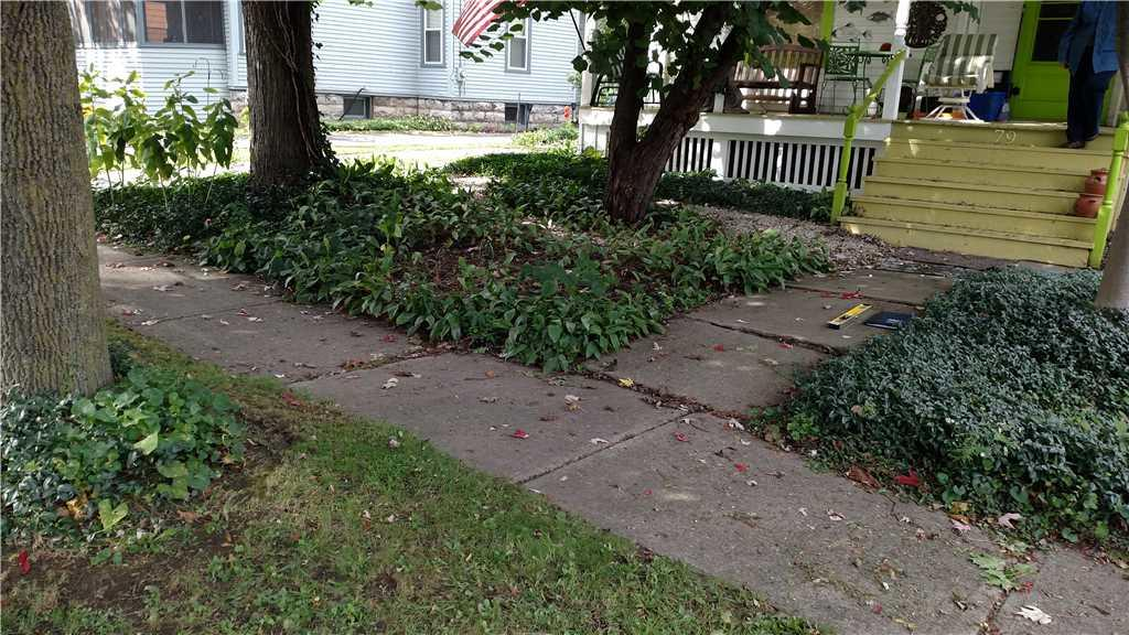 Seneca Falls rough sidewalk
