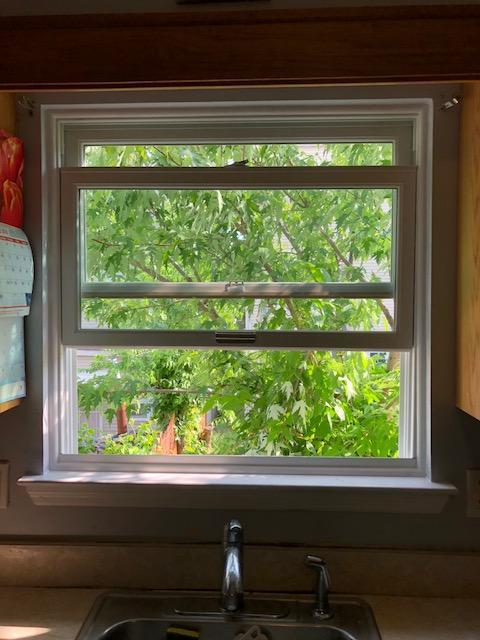 Marvin Infinity Double Hung Window in Kitchen