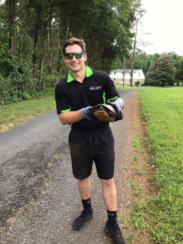 Saving turtles in Gainesville, Va