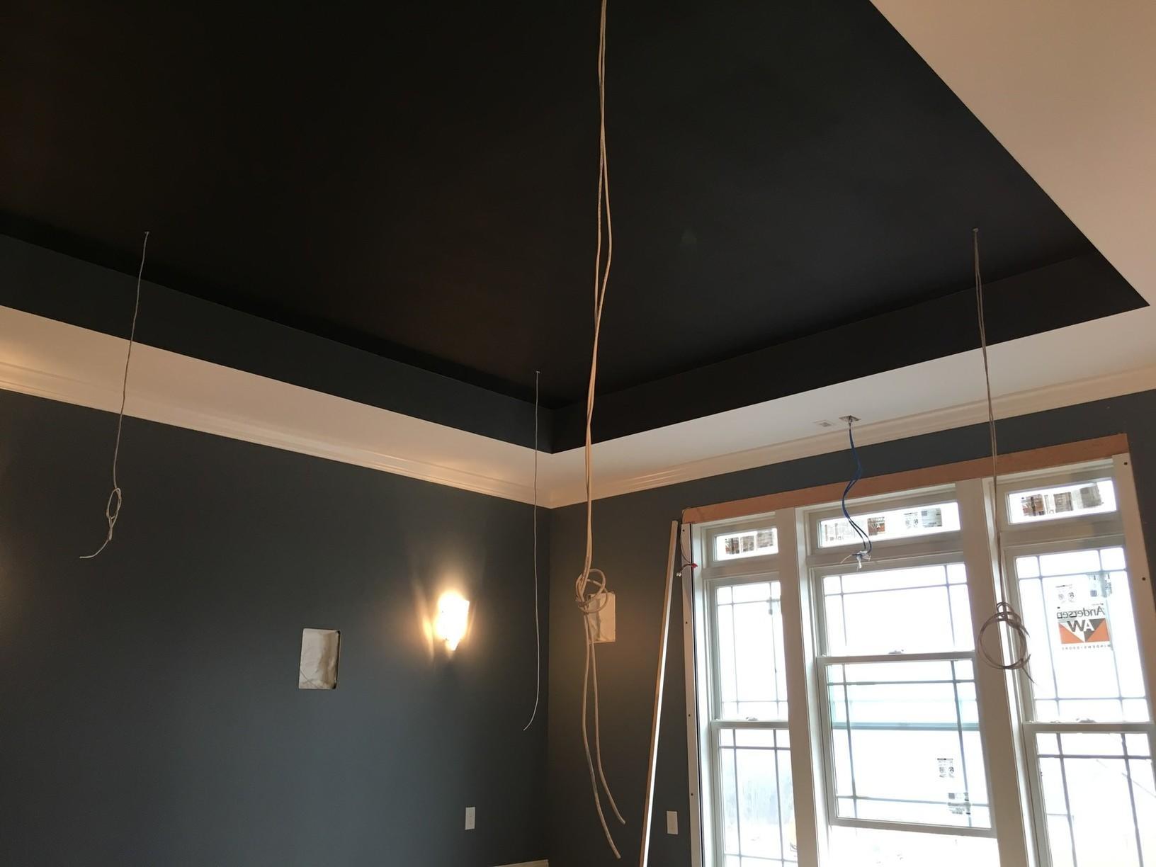 Ceiling in Progress