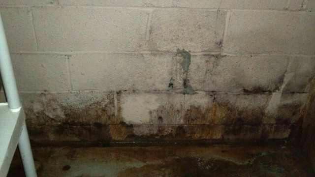 Wet Basement in Hartsdale, NY