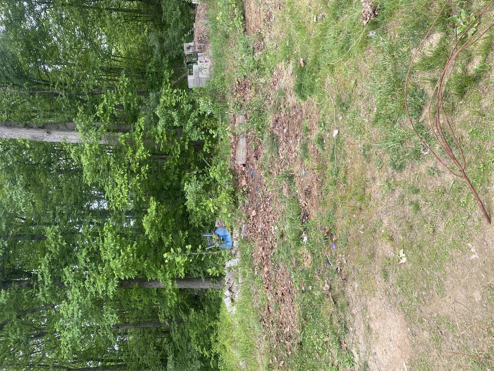After Photo of Field Clean Up in Amissville, VA