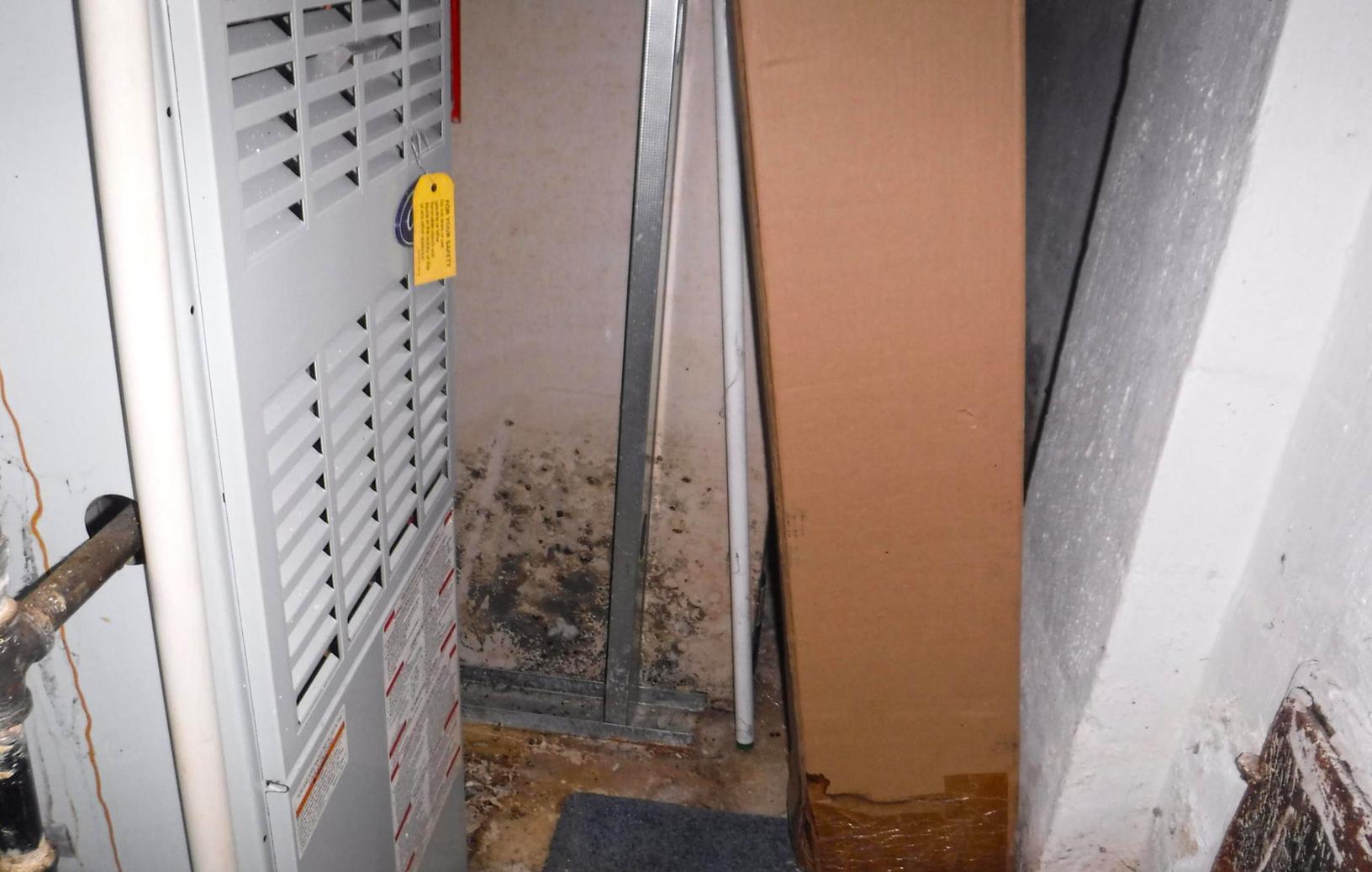 Mold Remediation Step #1