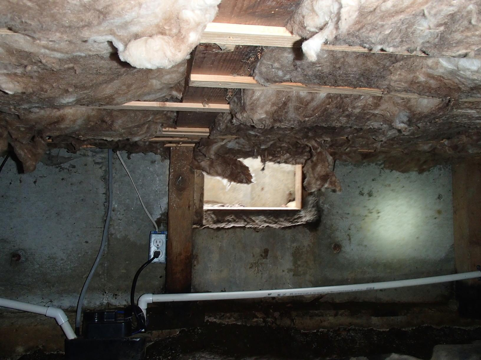 Problems with Crawlspace Leaking in Lynnwood, WA