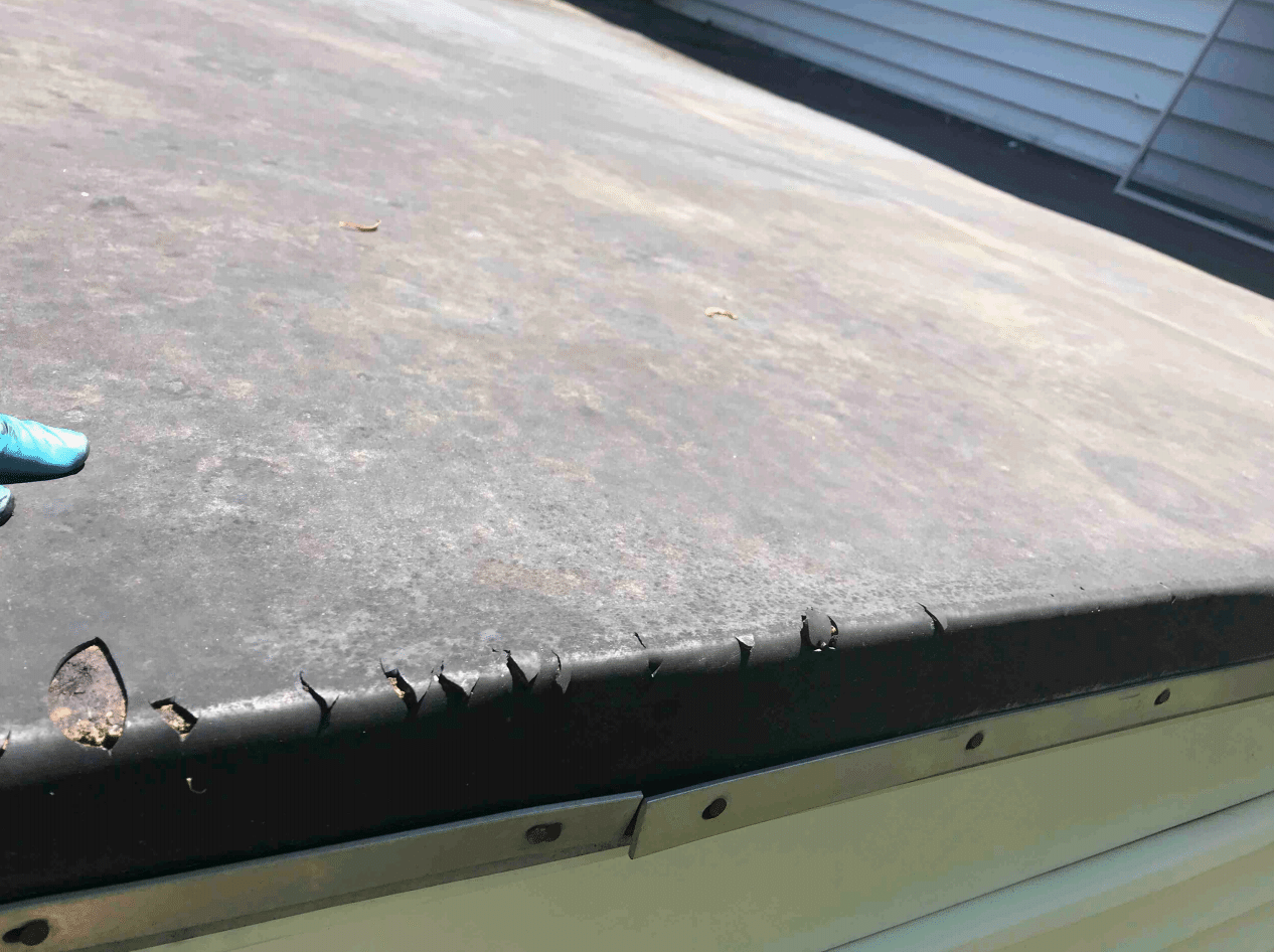 Tear in Flat Roof