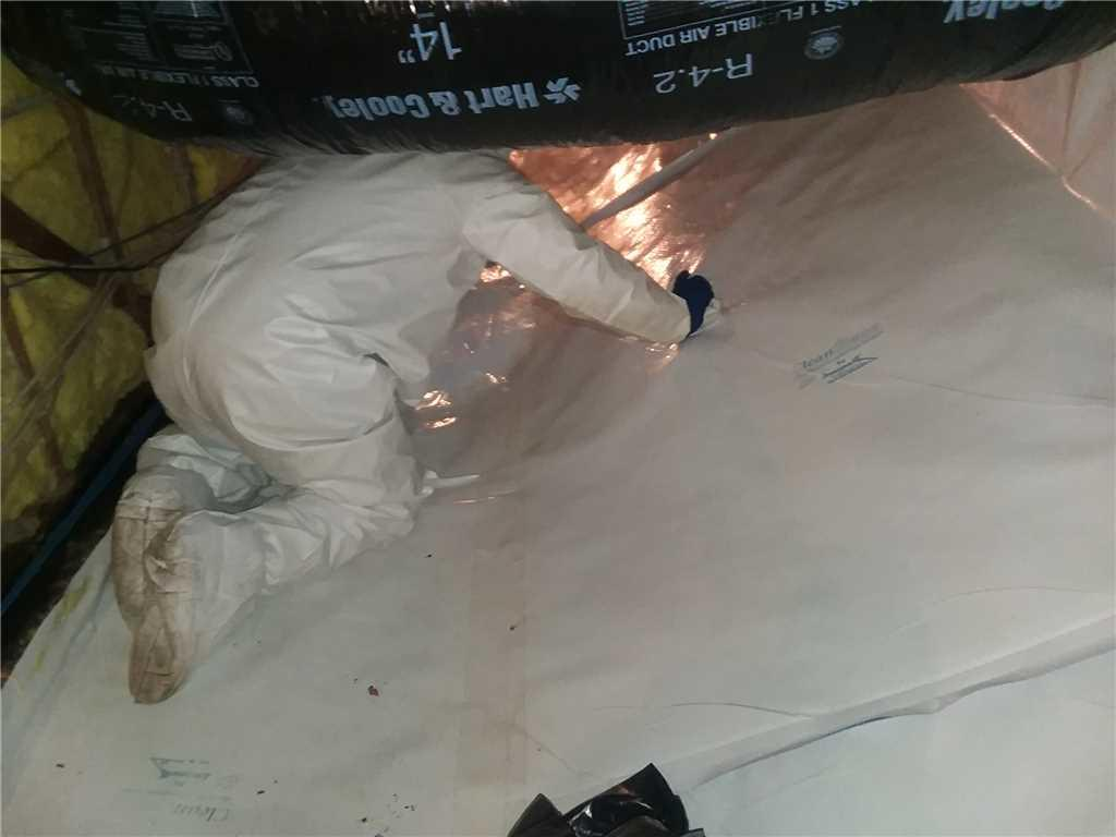 Crawl Space Clean-up