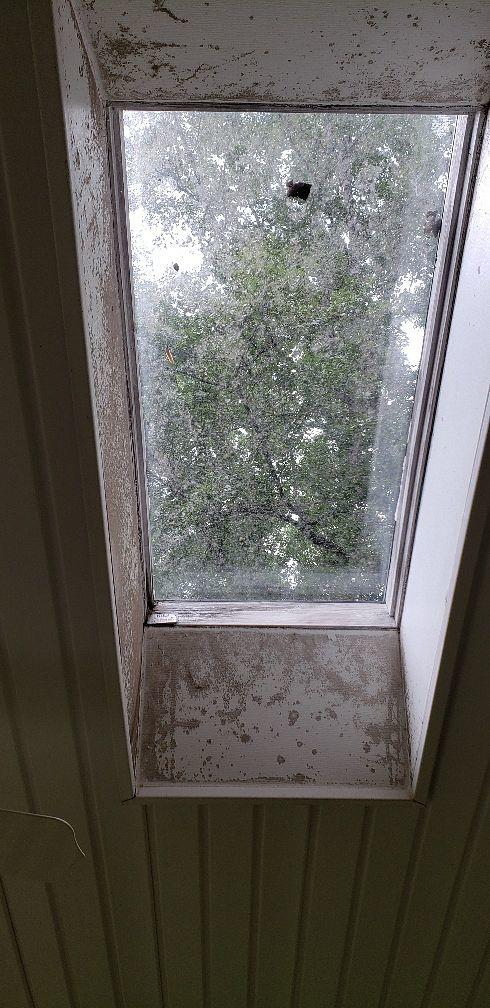 Rot and Water Damage Under Skylight