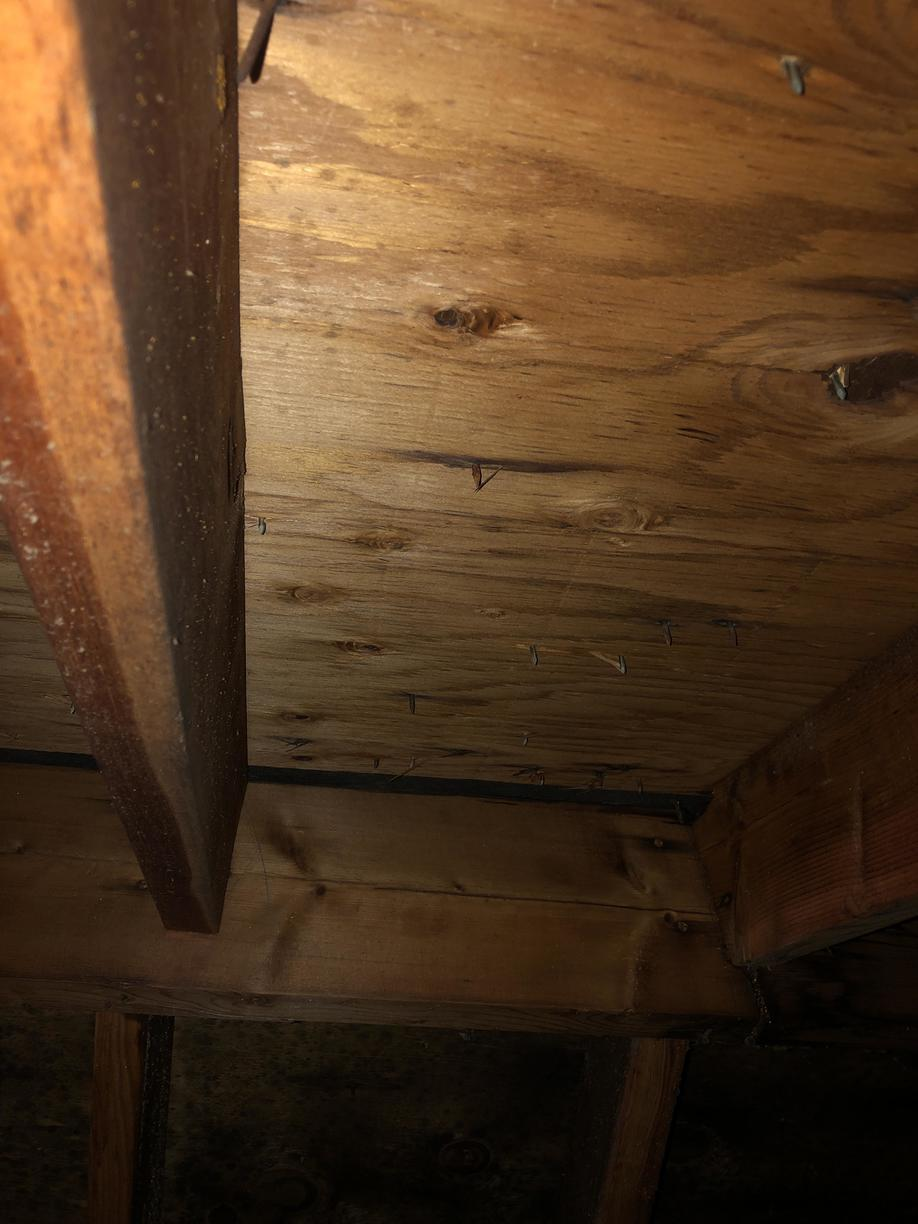 Mold less ceiling