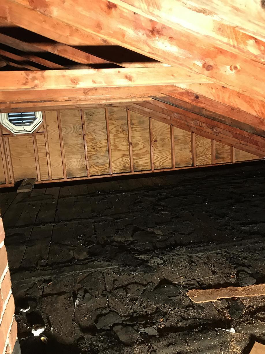 Full attic after mold and moisture removal