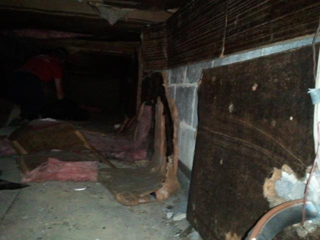 Crawl Space before - rotting insulation