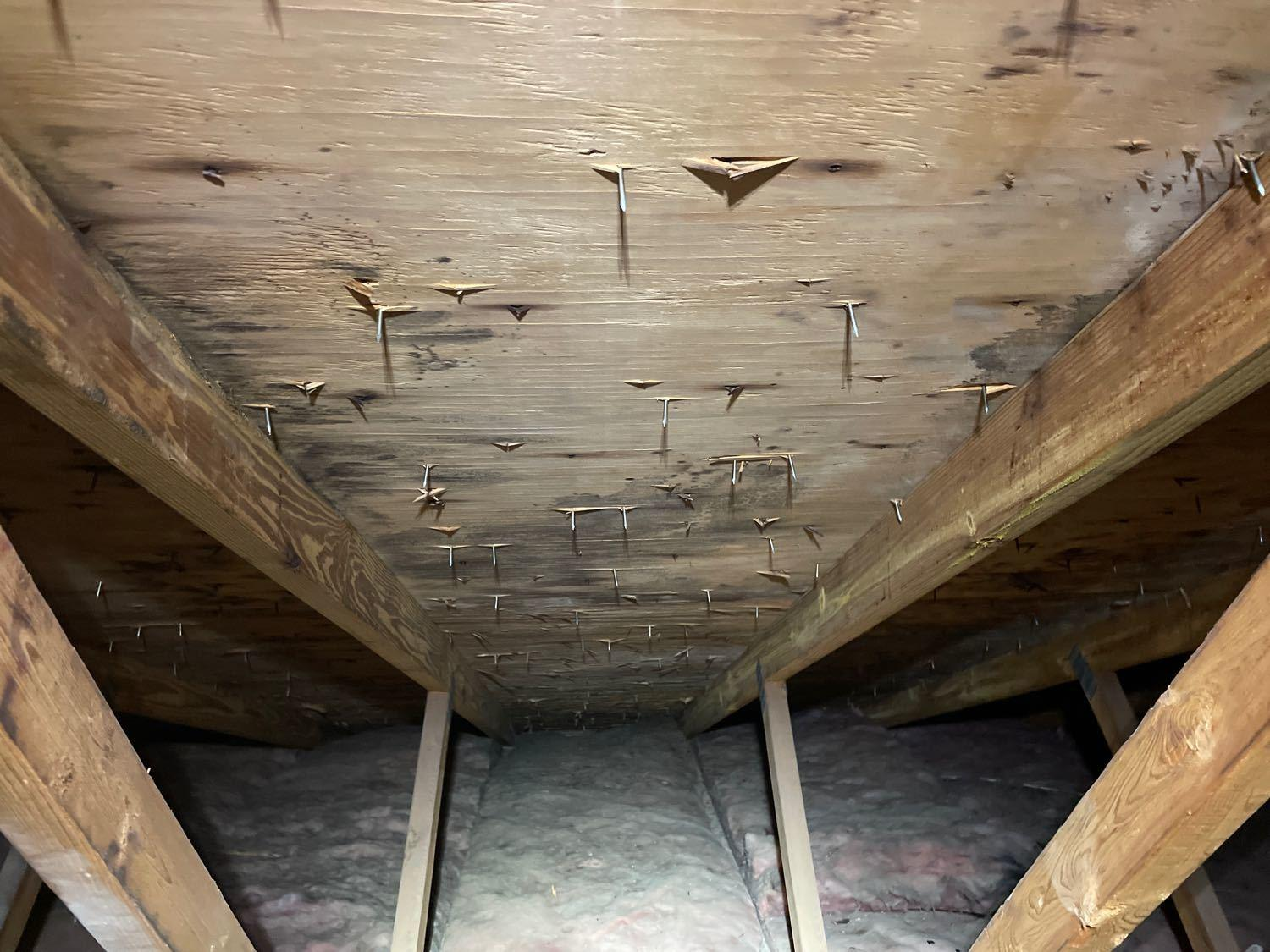 Mold on attic boards before removal
