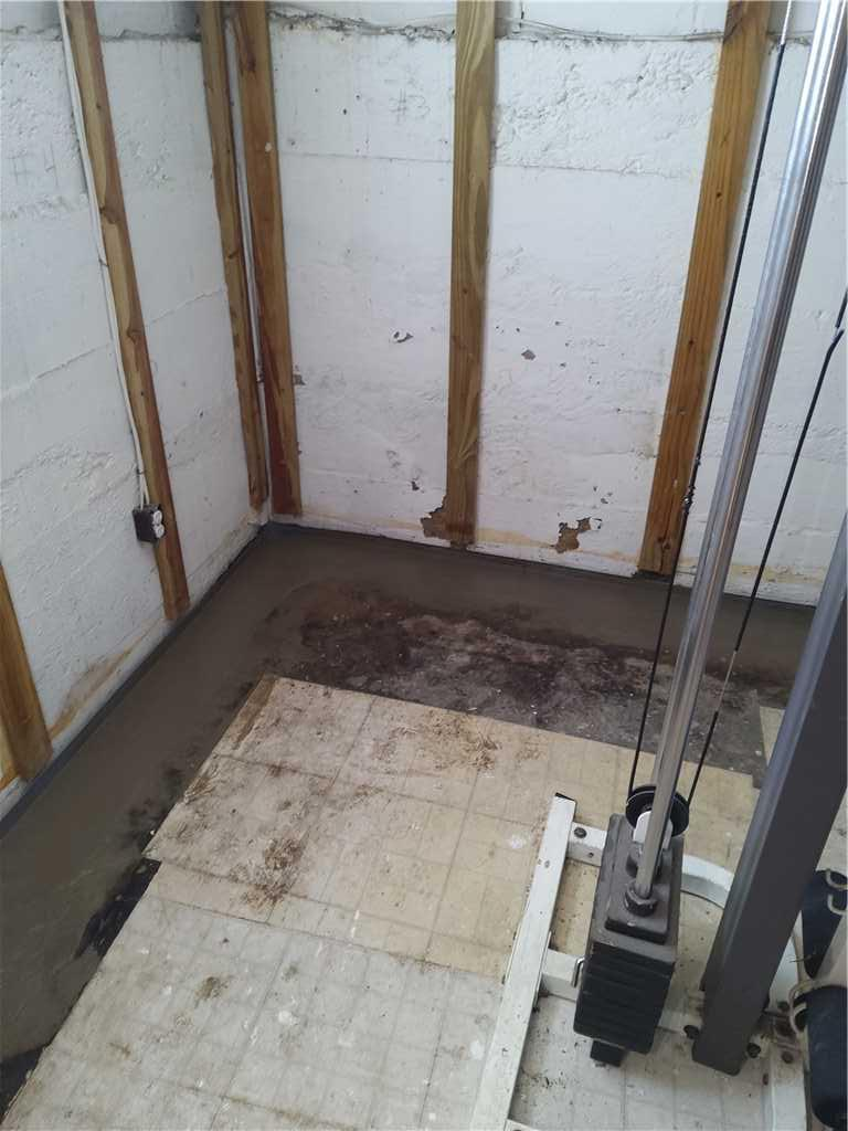 Leaking Water and Condensation Will Lead to Mold Growth